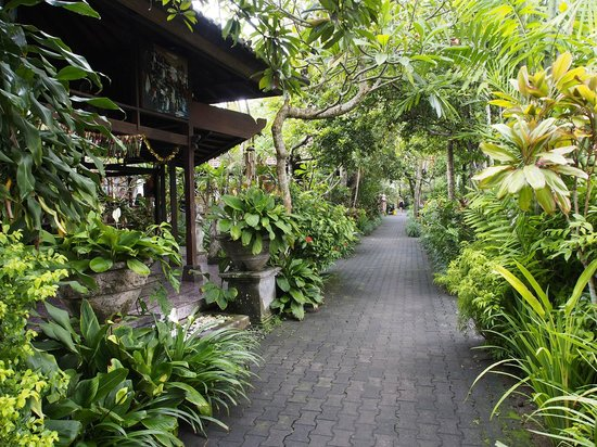 Taman Harum Cottages: Garden path