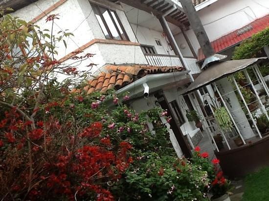 Hostal Macondo: Jardines preciosos, donde abundan las aves