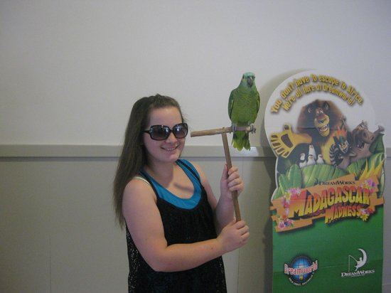 Ashmore Palms Holiday Village: Pictures with a tame bird in the activity centre