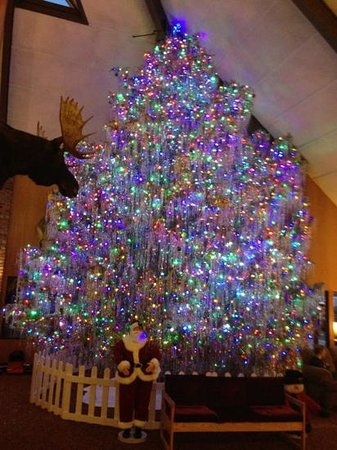 Fairmont Hot Springs Resort: Always a nice big tree for Christmas. we have even driven out just to see the tree.