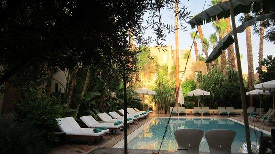 Les Jardins de la Medina: Les jardins de l'hôtel