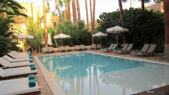 حدائق المدينة: piscine 