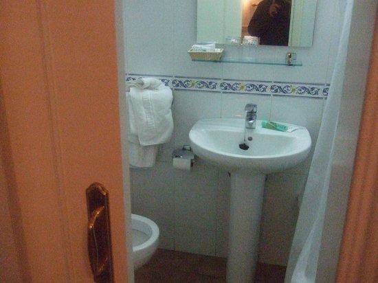 Hostal Triana: Adequate bathroom, the bath slider door didn't close out fully