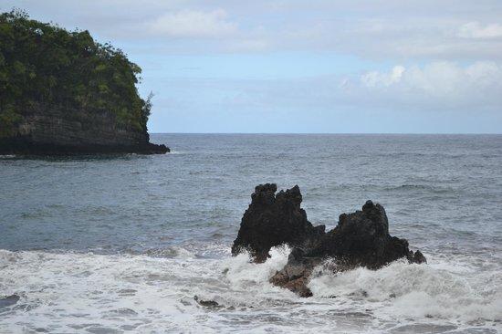 Hawaii Tropical Botanical Garden : View of the Bay