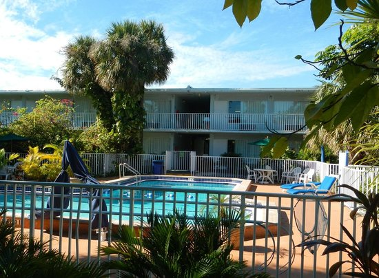 Ramada Fort Lauderdale Airport/Cruise Port: swimming pool