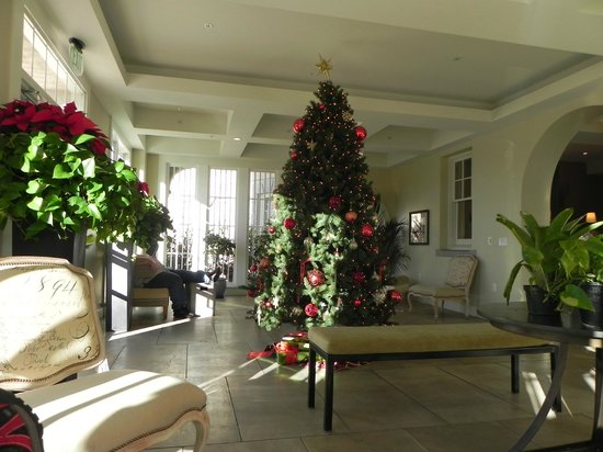 Hotel Parq Central: Solarium with Christmas decorations: great place to read