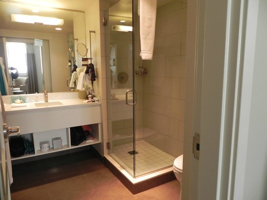 Hotel Parq Central: Shower with great rain showerhead is big enough for two!