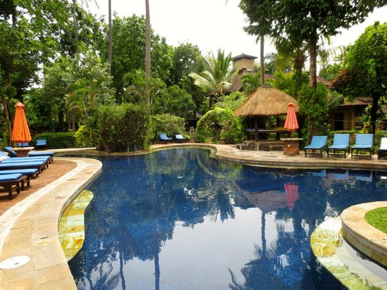 Rambutan Boutique Hotel: Pool in back garden