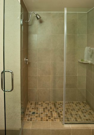 Airtel Plaza Hotel : Preferred Room Shower