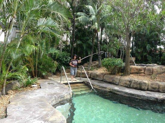 مانترا صن سيتي: Lush garden area around small pool & spa