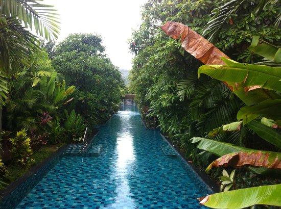 Metadee Resort and Villas: swim up to your room this way