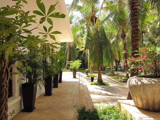 Lotus Blanc Resort: Yard