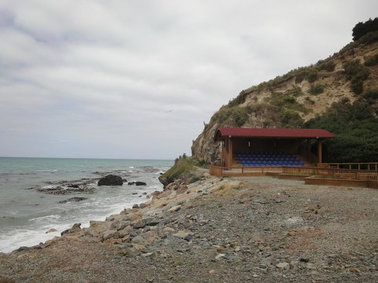 Oamaru Blue Penguin Colony: viewing stand