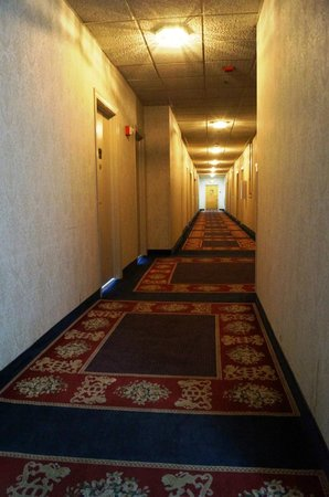 ‪‪The Congress Plaza Hotel and Convention Center‬: Hallway‬