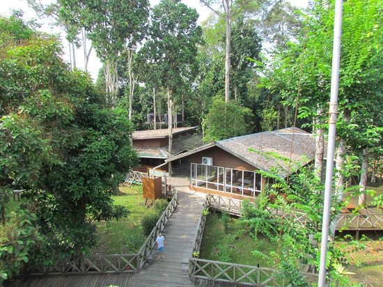 Borneo Nature Lodge: View of the restaurant from the viewing platform