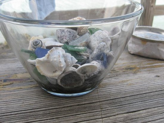 Powerboat Adventures: shells on porch table outside area 51