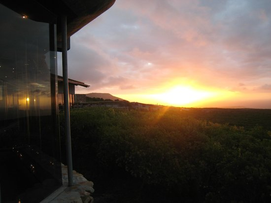 Grootbos Private Nature Reserve: Sunset from the lodge