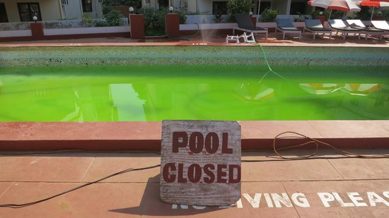 Royal Mirage Beach Resort: Swimming Pool was closed for 4 days - just look at the colour!