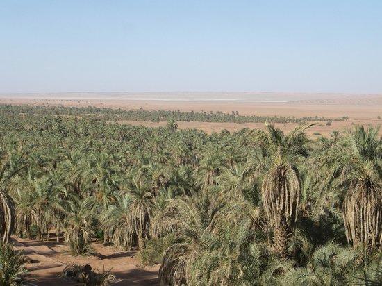 Algerian Sahara: Vista panoramica dell'oasi di Timimoun