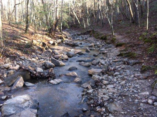 Emerald Hollow Mine: Creek