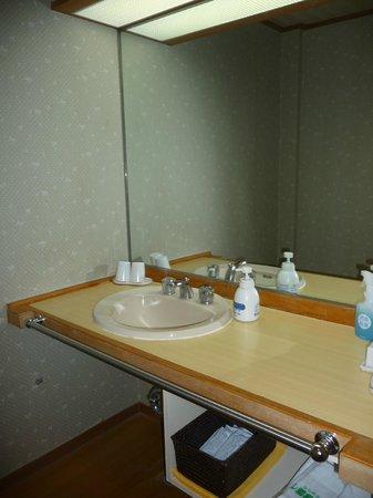Hotel hakone Powell: Large sink area