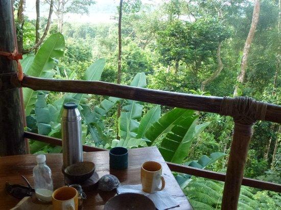 La Loma Jungle Lodge and Chocolate Farm: Ausblick von Cabinas