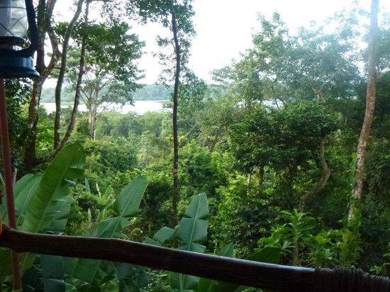 La Loma Jungle Lodge and Chocolate Farm: Ausblick Cabinas