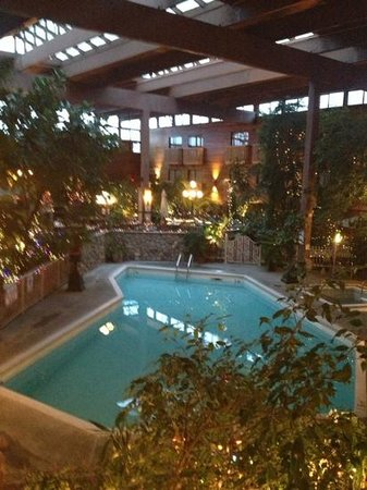 Vernon Atrium Hotel and Conference Centre: pool