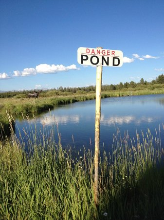 Bar-N-Ranch: Private fishing pond