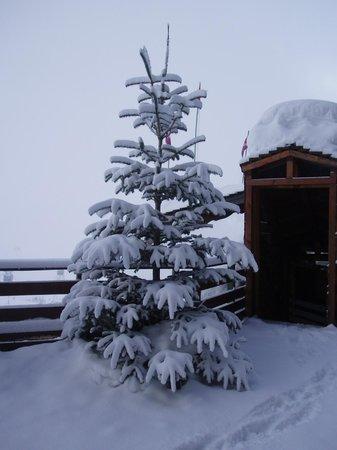 Fahrenheit Seven Val Thorens: sapinn sur la terrasse