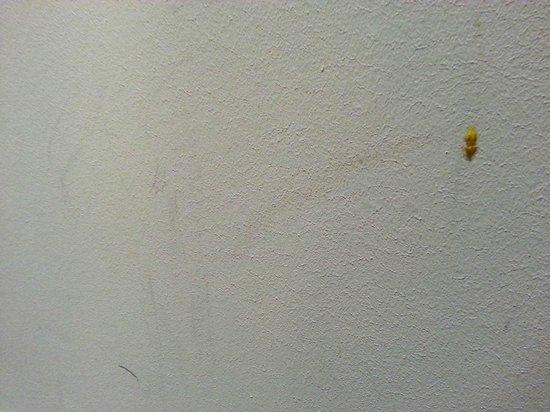 Conscious Hotel Vondelpark: More nice clean walls