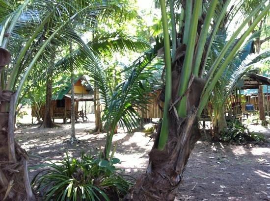 KP Huts: bungalow