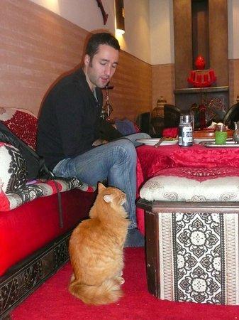 Riad La Porte Rouge: Avec Max, le pacha ( un peu voleur...) du Riad