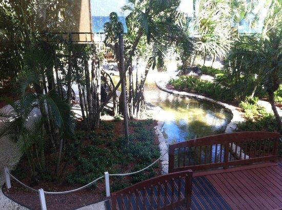 Grand Cayman Marriott Beach Resort: Upper View from