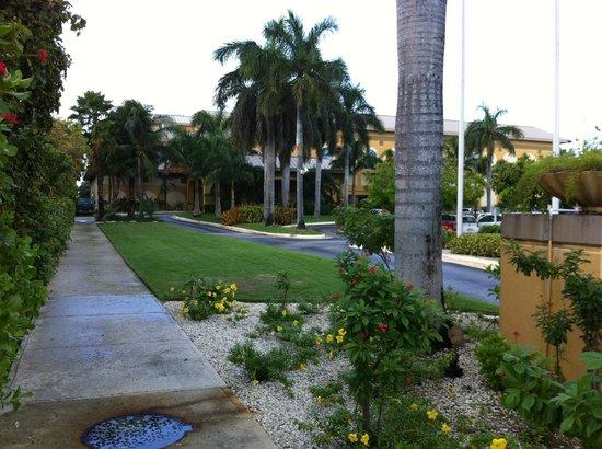 Grand Cayman Marriott Beach Resort: Street View of Marriott