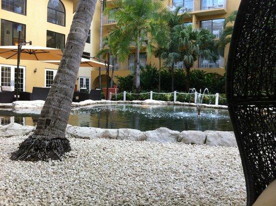 Grand Cayman Marriott Beach Resort: Turtle Area Outside
