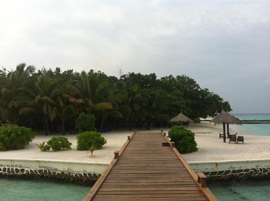 VOI Maayafushi Resort: Luna di miele splendida!!!