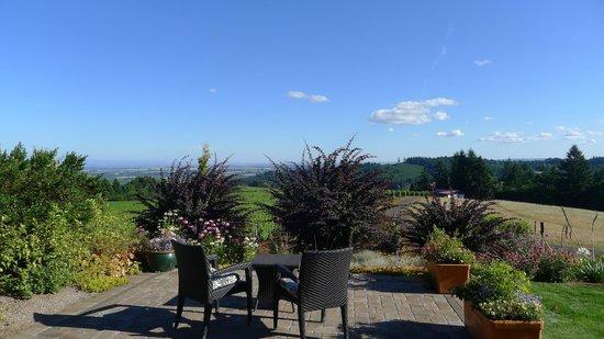 Black Walnut Inn & Vineyard: Room with a view