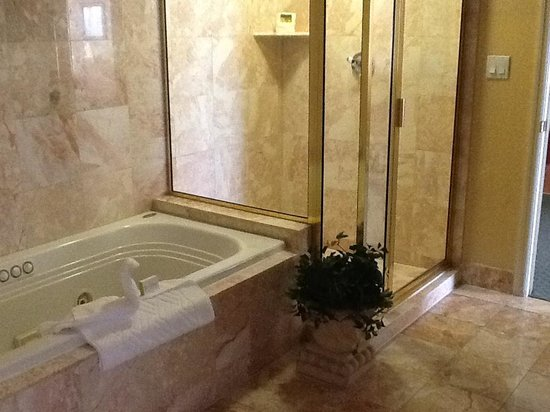 Doubletree Suites by Hilton Naples: Bathroom