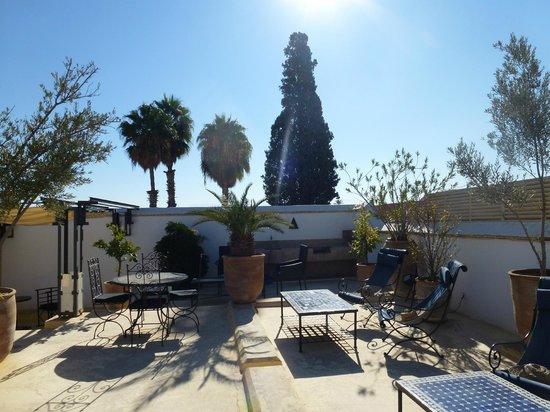 Riad Medea: terrace