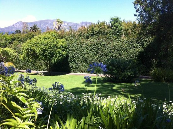 Constantia Stables: The garden