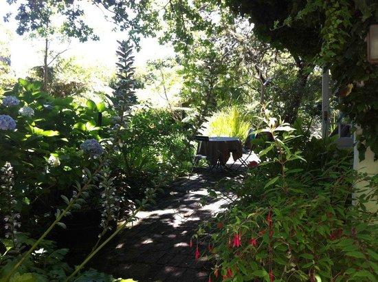 Constantia Stables: Terrace area