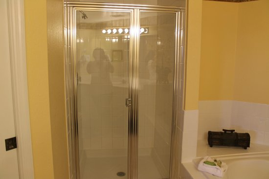 Holiday Inn Club Vacations At Orange Lake Resort: Stand up shower
