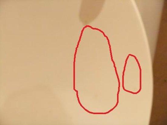 Melia Granada: tracce di urina sulla tavolozza del water