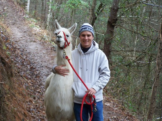 Smoky Mountain Llama Treks - Day Tours : with Abu