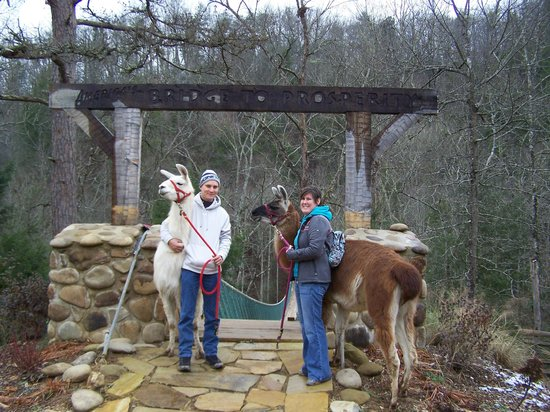 Smoky Mountain Llama Treks - Day Tours: with Abu and JJ Bird