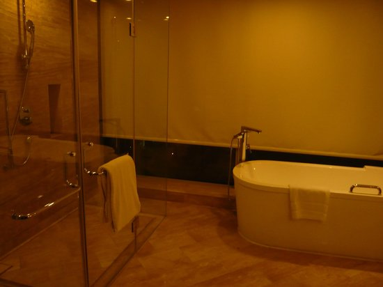 Beijing Marriott Hotel Northeast: Bathtub and shower