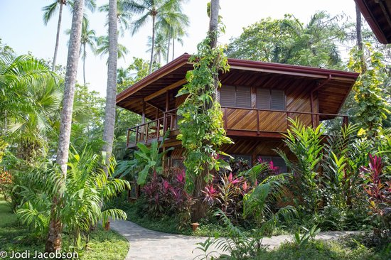Tambor Tropical Beach Resort: our cabin