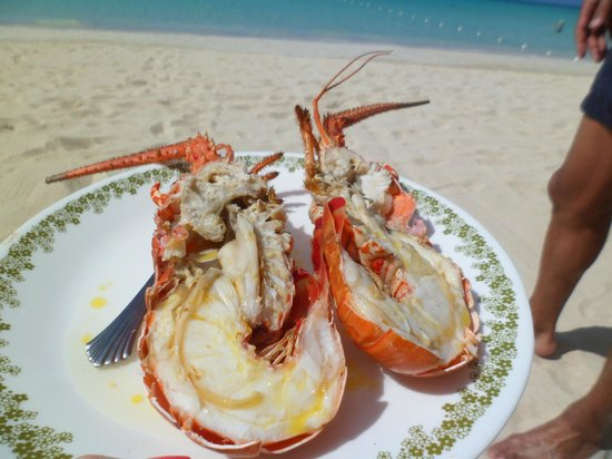 Nirvana on the Beach: Lobster on the Beach