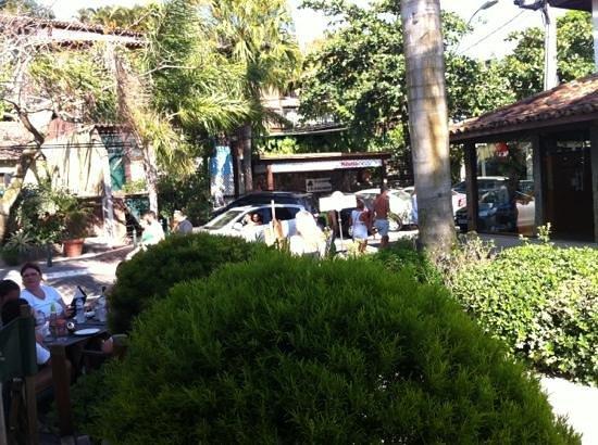 Colombina: vista do passeio das palmeiras